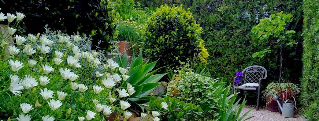 Nuestro jardin guia de jardin for Casas mi jardin