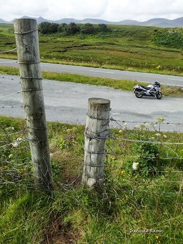 passeando - Passeando por caminhos Celtas - 2014 - Página 5 DSC07746