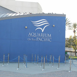 The Aquarium of the Pacific's profile photo