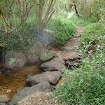 Creek crossing behind Fullers Park (55385)