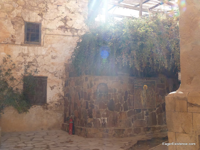 burning bush, st. catherine's monastery, mt. sinai