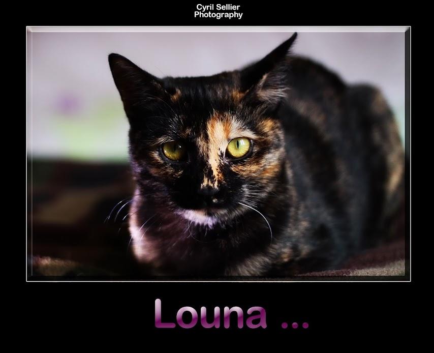 LOUNA - Page 6 Sans+titre-1