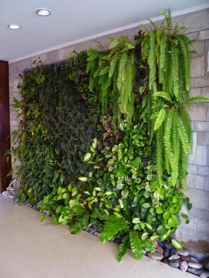 Jard n vertical en buenos aires roosevelt belgrano for Plantas para muros verdes verticales