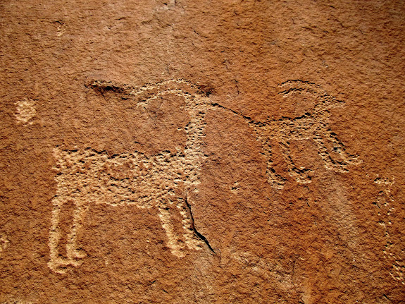 Tethered sheep petroglyph that seems to be a common theme in Nine Mile Canyon