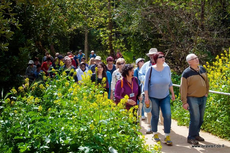 Фоторепортаж об экскурсии в Тель Дан и Верхнюю Галилею
