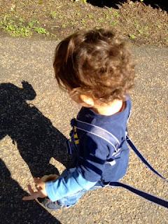Baby boy on reins