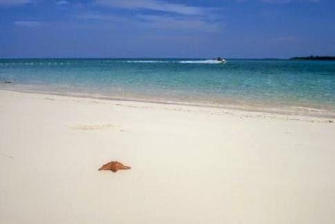 Cable beach   Picture of Cable Beach Nassau   TripAdvisor