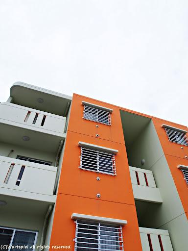 白×白×オレンジ
