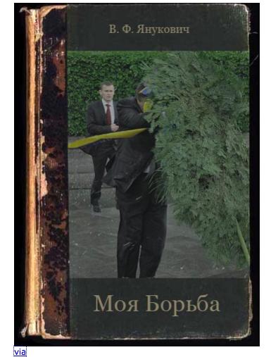 Moya Borba