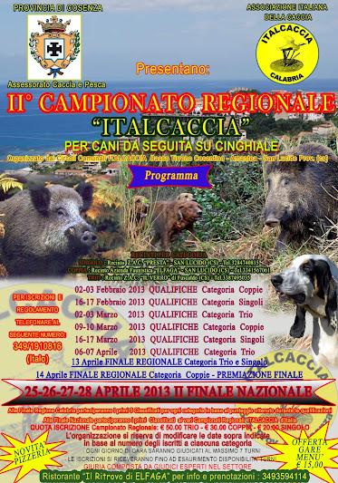 Gara Regionale Italcaccia 2013