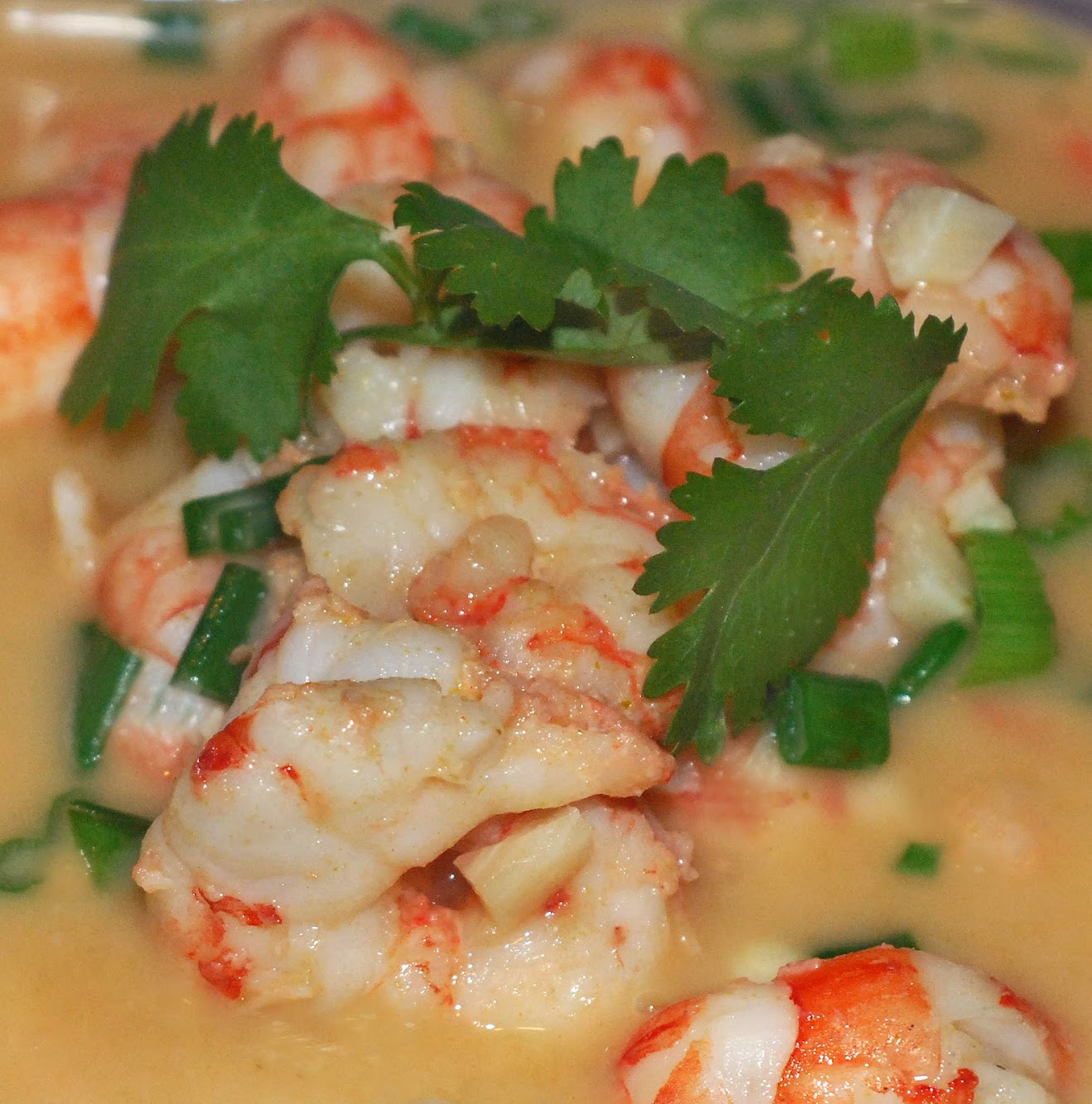 Thai Style Green Curry Shrimp