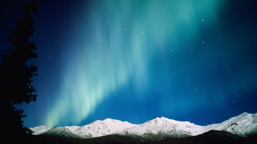 Night Lights, Aurora Borealis, Alaska.jpg