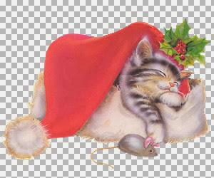 JLchristmaskitty.jpg