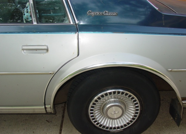 1979Caprice_Clean2_Outside.jpg