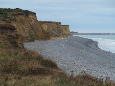 Coast view looking westwards