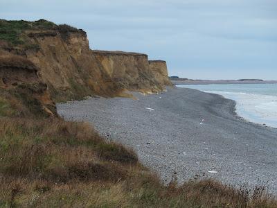 Coast view looking westwards
