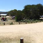 Wallagoot picnic area and car park (104689)