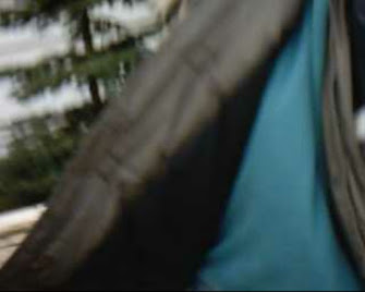 Matthias Frey FDP Neustadt n der Weinstraße Holzmühlgasse 28 / Telefon: 06321-679763, FDP Neustadt Telefon: 06321-679763, FDP Neustadt Holzmühlgasse 28, Parteibuchklüngel-Richter Matthias Frey, Frauenschlägerfreund Matthias Frey, Matthias Frey und Uschi Frey Neustadt Weinstraße, Uschi Frey Neustadt Weinstraße, Amtsgericht Neustadt Weinstraße