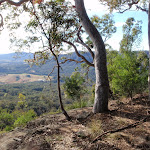 View from bushtrack (62249)