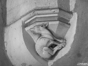 Castelul Corvinilor: detaliu arhitectura cu pui de lup