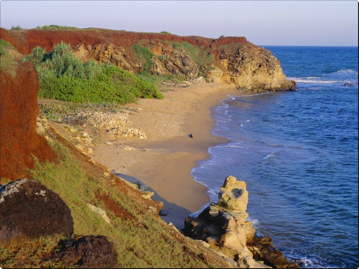 Southern Coastline, Sri Lanka.jpg