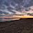 Faye Mann avatar image