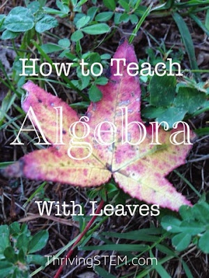 A Title photo How to Teach Algebra with Leaves