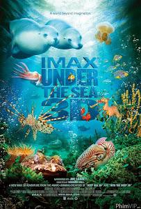 Dưới Đáy Đại Dương - Under The Sea poster
