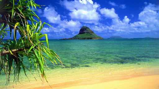 Chinaman's Hat, Oahu, Hawaii.jpg