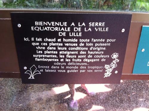 Serre Lille France