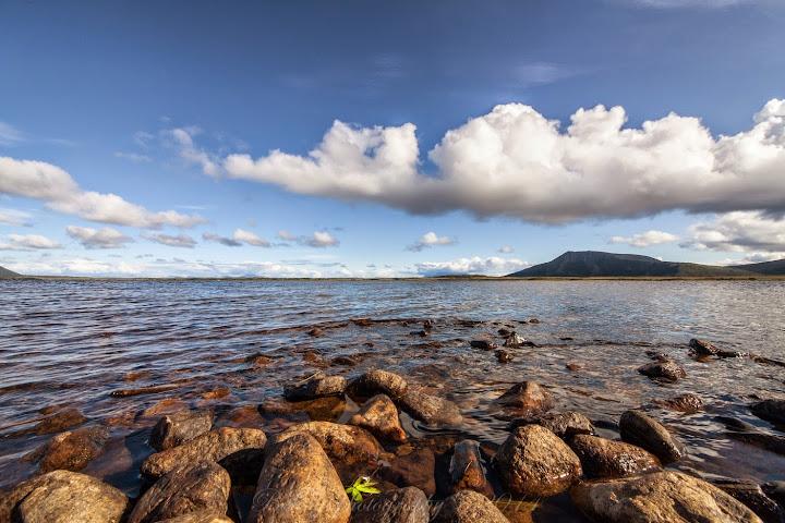 Skogvoll, Andøya island, Norway. Photographer Benny Høynes