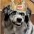 Yadoking avatar