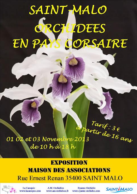 Exposition Orchidées en pays corsaire (St Malo - 35) - 1/2/3 Novembre 2013 Affiche+Expo+2013