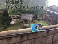 現場是小石城動物園。