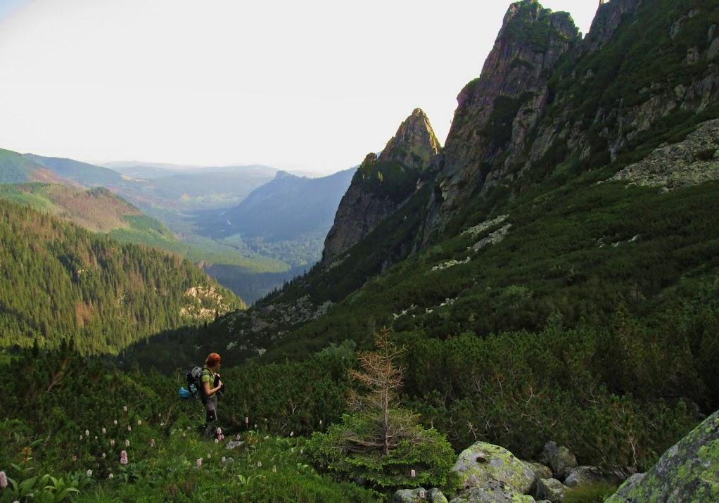 Dolina Żabia Białczańska - podejście