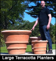 Extra Large Terracotta Pots and Planters