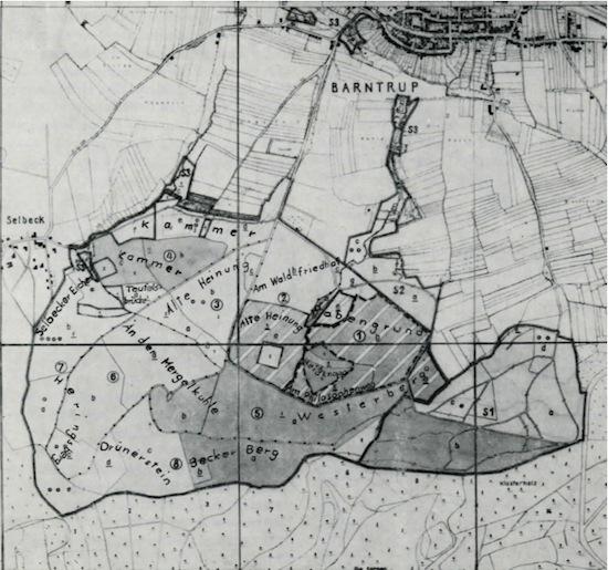 """Das alte """"Holt to Heyntorpe"""" von Anno 1357"""