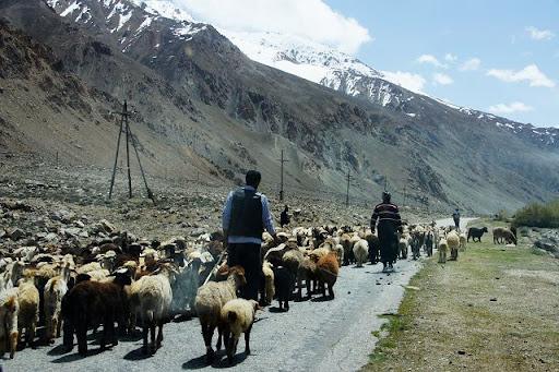 達人帶路-環遊世界-旅行別忘了走自己的路