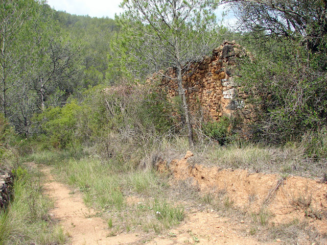 Senderismo Tales - Marimón - Les Coles - Pi Nano - Cova Anacleto - Chautena - La Llosa