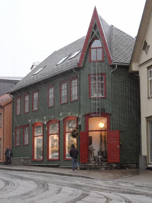 Norvège mars 2014 SAM_1635
