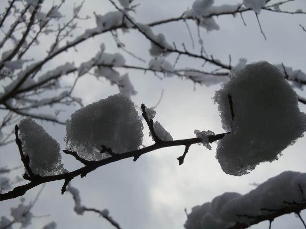 стихи про снег и лед