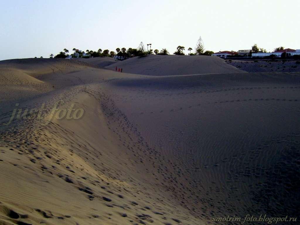Дюны - лунные пейзажи фото
