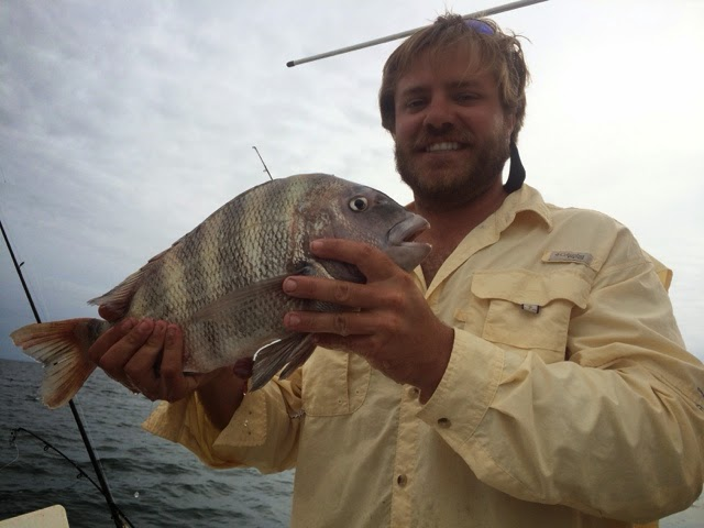 fishing sheepshead