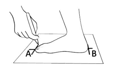 Per garantire il numero corretto della calzatura misura la lunghezza del tuo piede e scrivi nel forum la misura in cm.