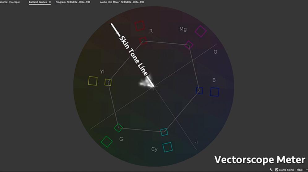 vectorscope meter