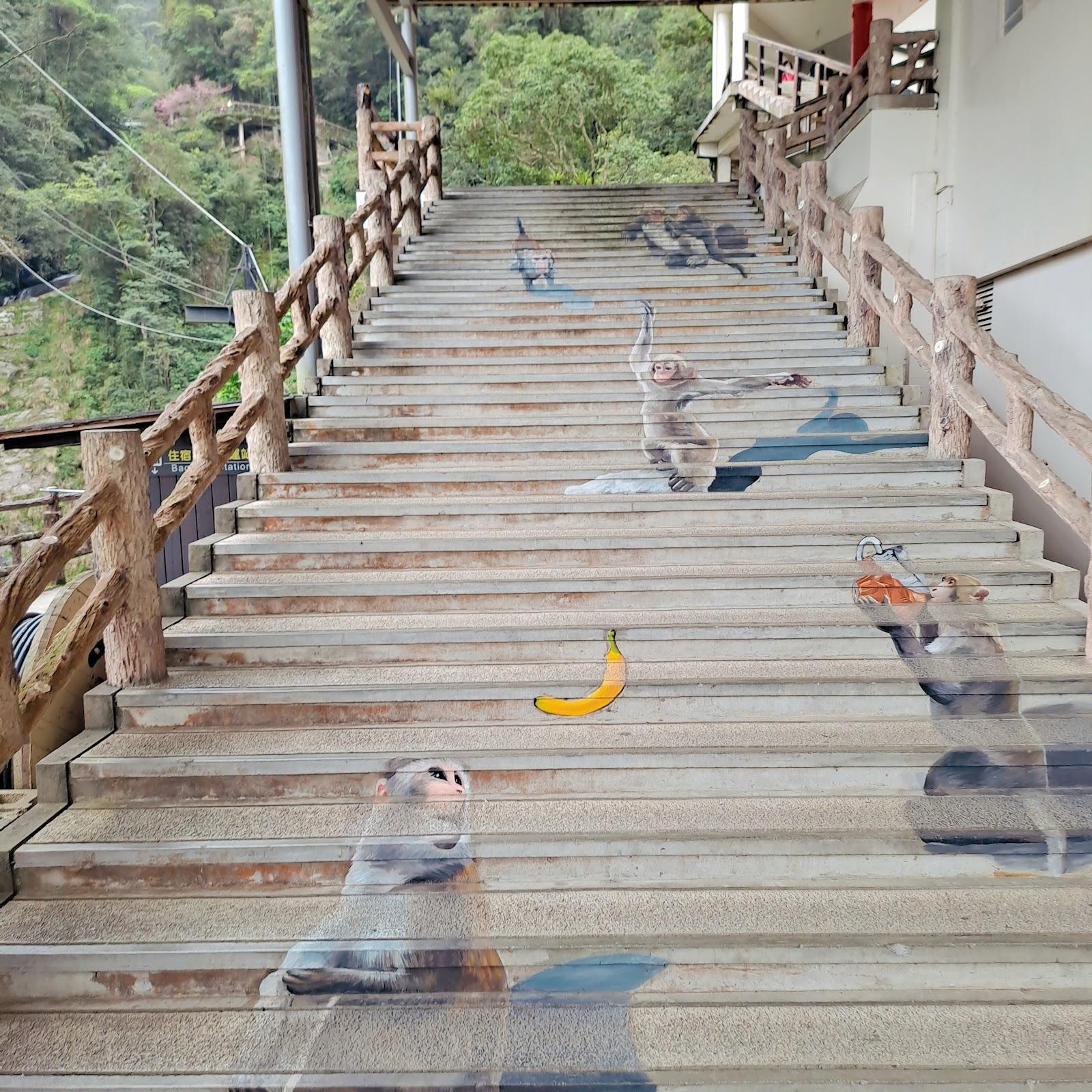 獼猴步道階梯