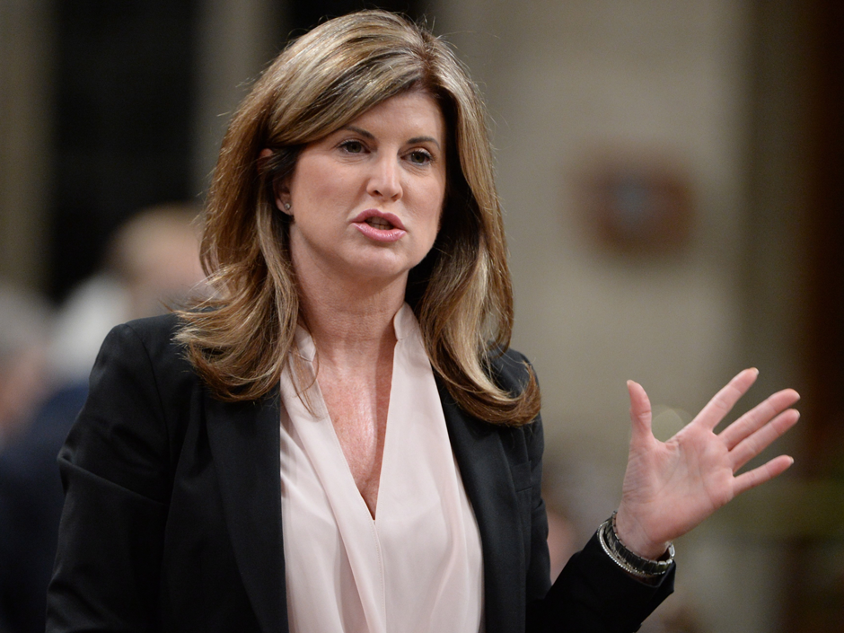 Interim Opposition Leader Rona Ambrose spent just under $320,00 from January 1 to June 30, according to an analysis of MP expense reports.