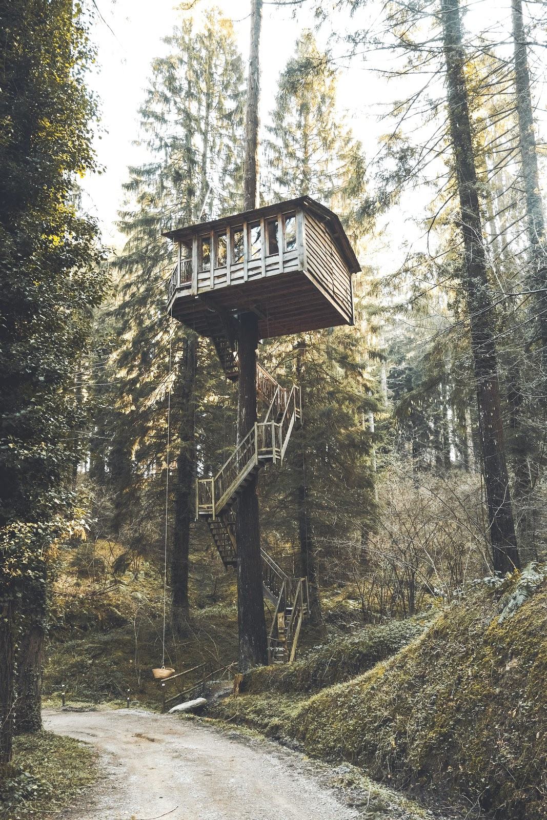 tall treehouse with stairs
