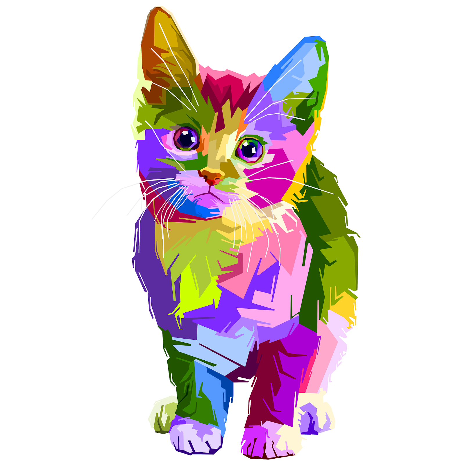 web design cat illustration