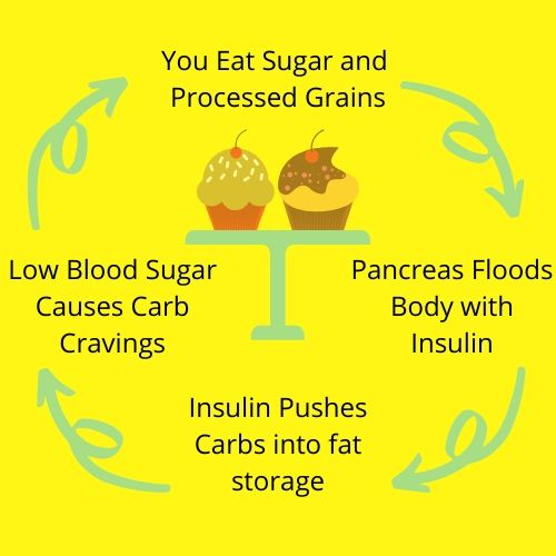 Break the insulin cycle. Diet vs exercise what's more important. simple ways to banish cravings.